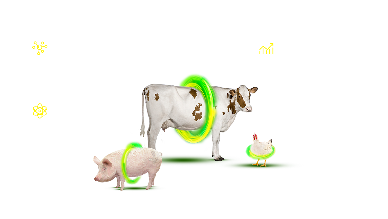 Minazel Plus<sup>®</sup>